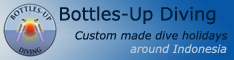 bottles-up logo