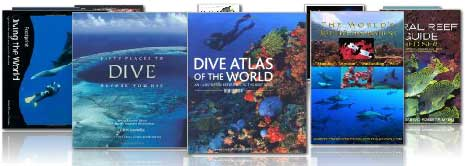 Scuba diving bestselling books 2013