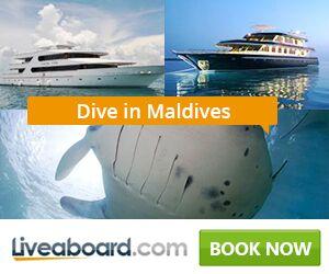 Book Maldives Liveaboard