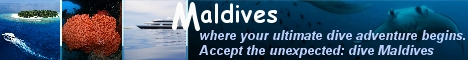 Maldives , where your ultimate dive adventure begins . Accept the unexpected dive Maldives.