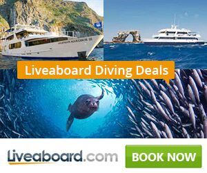 Compare prices of liveaboards to top ten dive sites