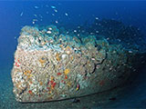 North Carolina shipwreck