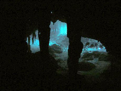 Divers in Dos Ojos Cenote