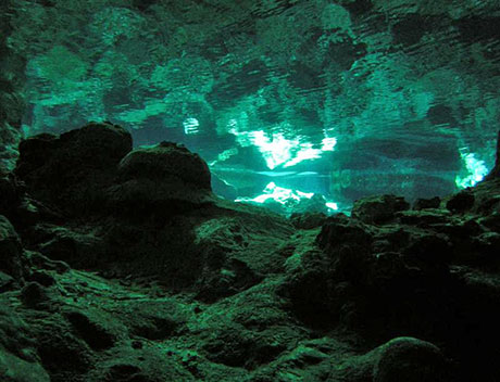 Diving Dos Ojos Cenote