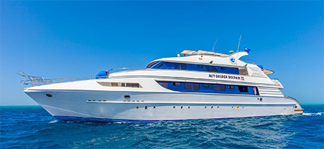 Golden Dolphin Red Sea liveaboard