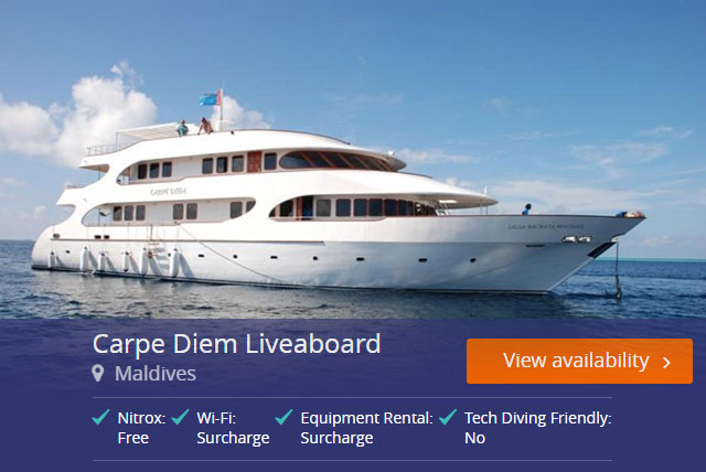 Carpe Diem Liveaboard in the Maldives