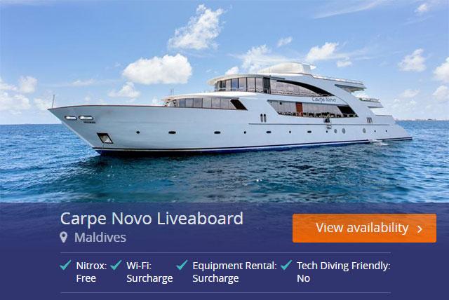 Carpe Novo Liveaboard in the Maldives