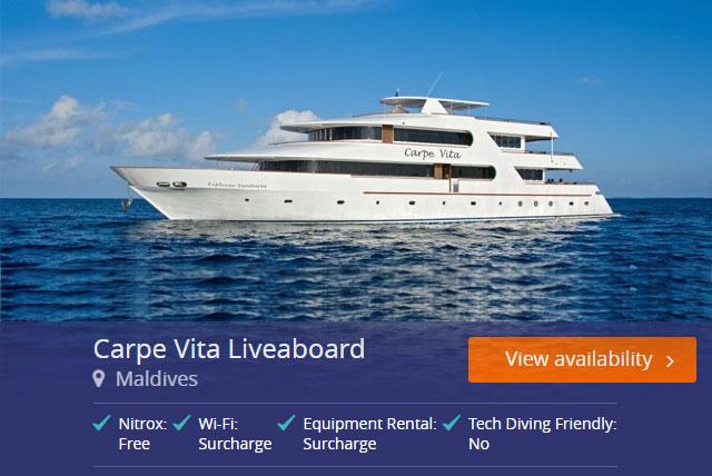 Carpe Vita Liveaboard