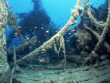 Diving Red Sea Wrecks