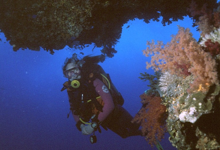 Photograph of Diver in the Egyptian Red Sea
