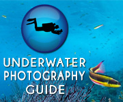 Underwater Photography Guide